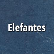 elefantes_p