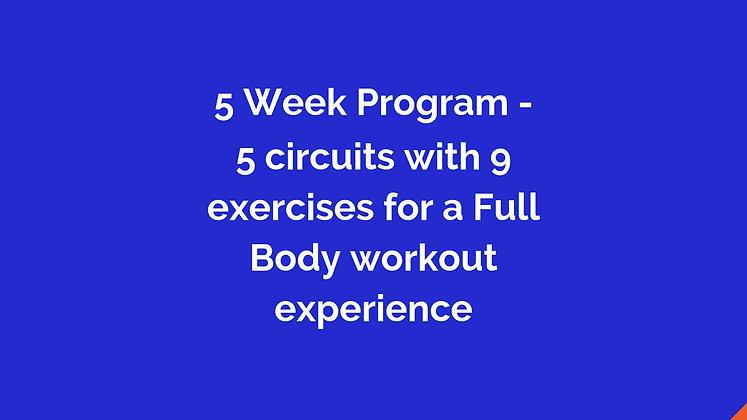 5 Week Full Body Workout Program