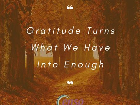 Gratitude is Amazing!