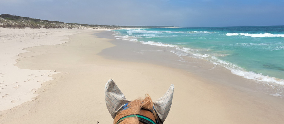 Top 3 horse camps in WA