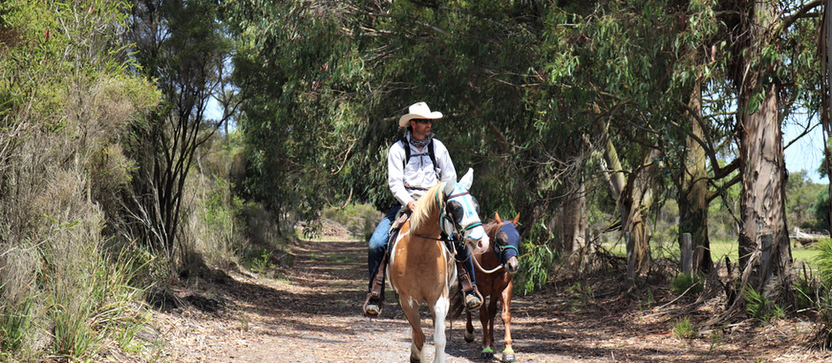 Denmark to Nornalup Heritage Rail Trail