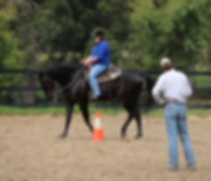 Horsemanship clinic at Brookleigh Equestrian Centre