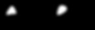 AXERPRINT Noir.png