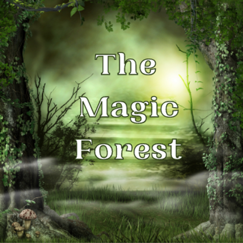 The Magic Forest Meditation Collection