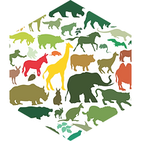 animals-hex.png