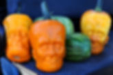 frankenstein-pumpkins-6.jpg