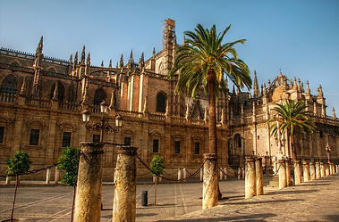 cc spain-seville-cathedral-and-palm-tree