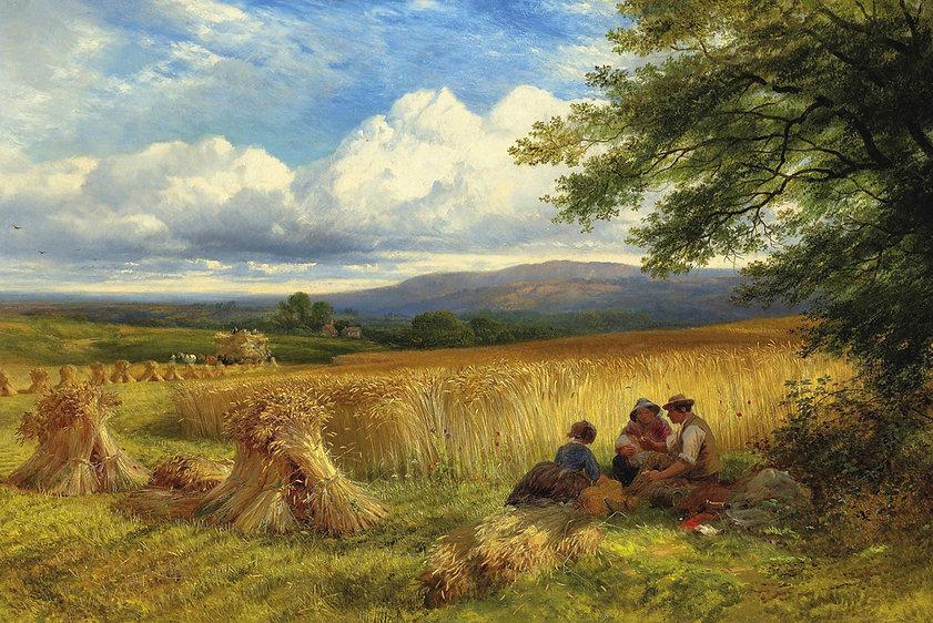 Harvest-Rest.jpg