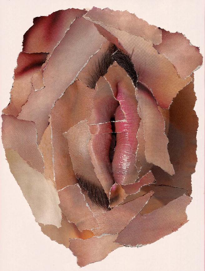 Vulva - Pedacitos de Papeles