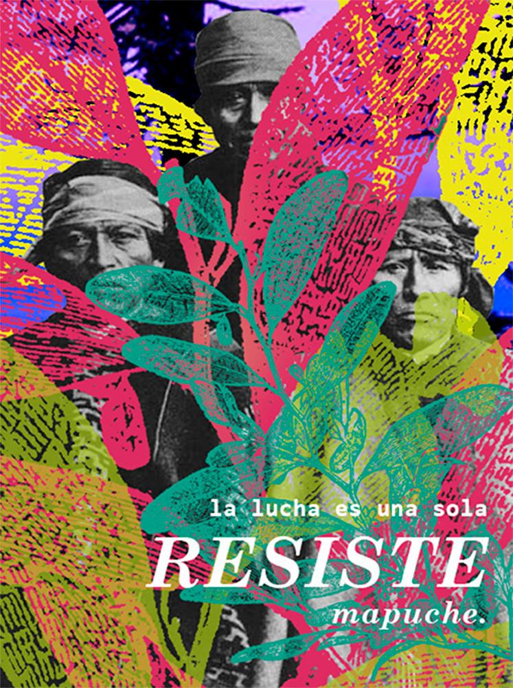 Resiste Mapuche - Paloma Garling G.