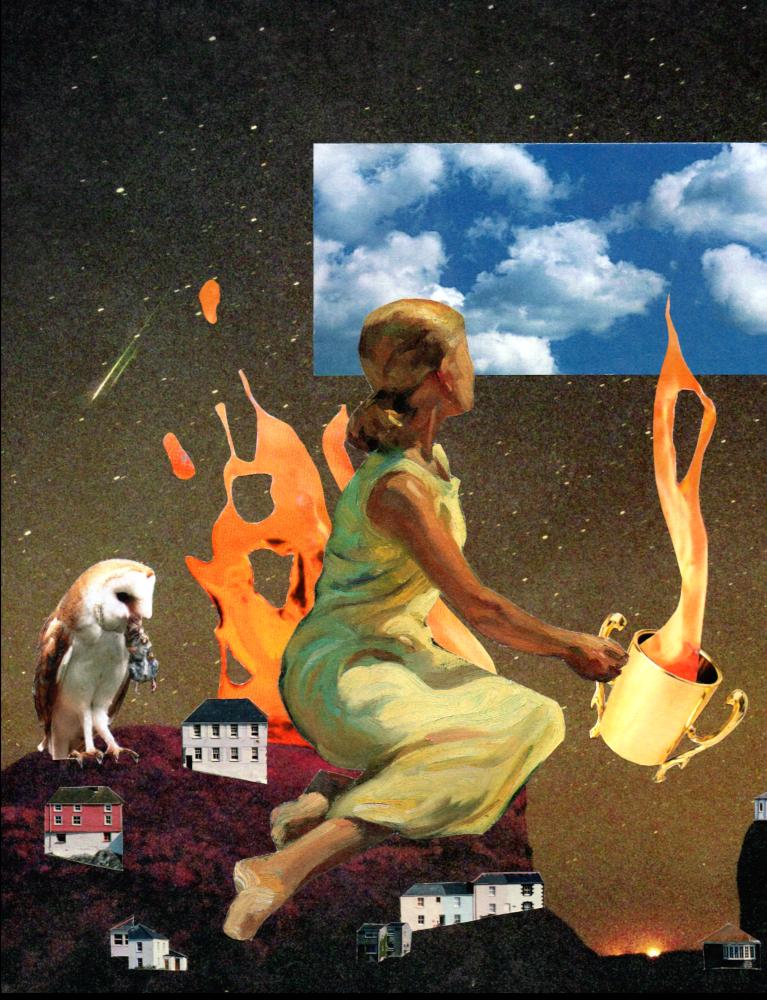 Antes del Amanecer - Seibel Collage