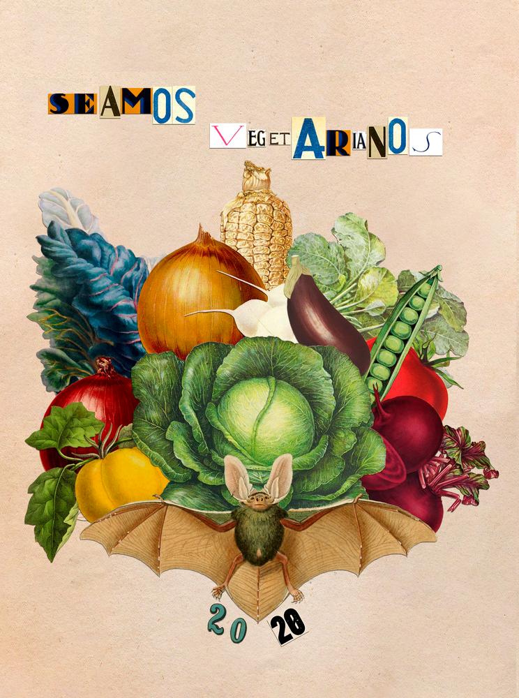Seamos Vegetarianos - Ángela Tapia Fariña