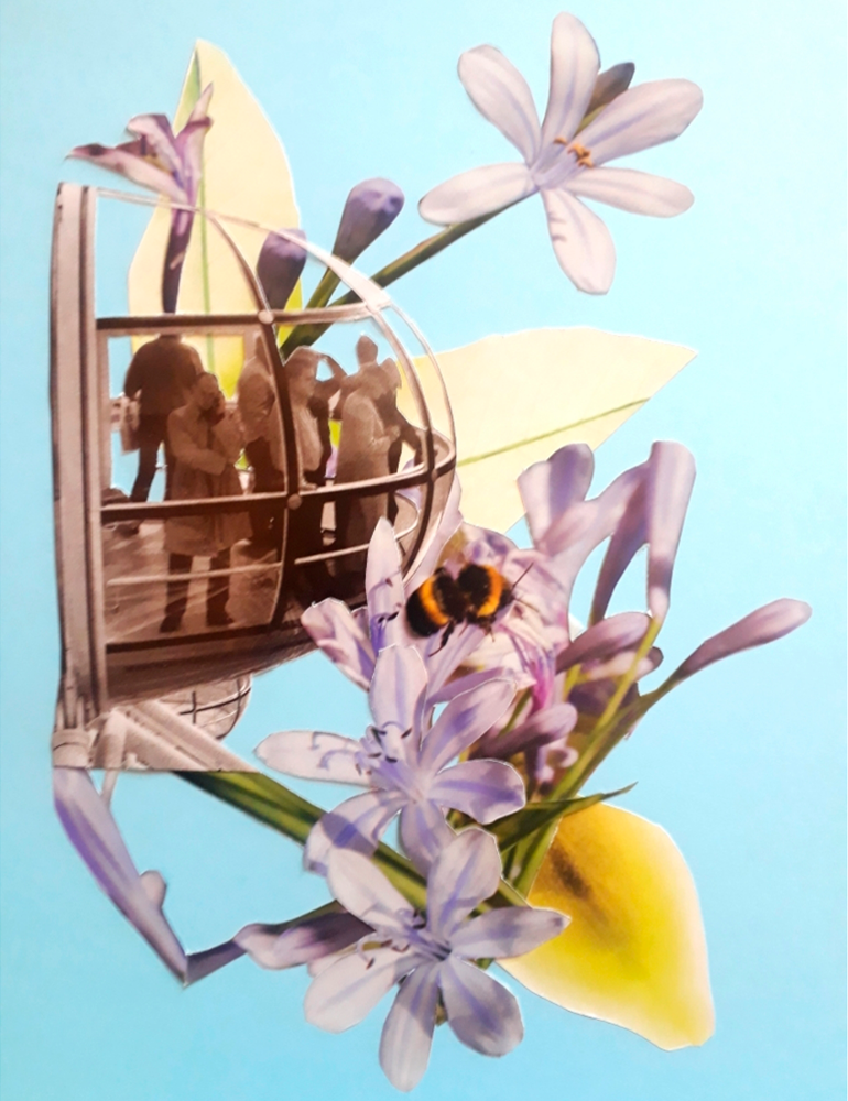 Flores - Elireveco