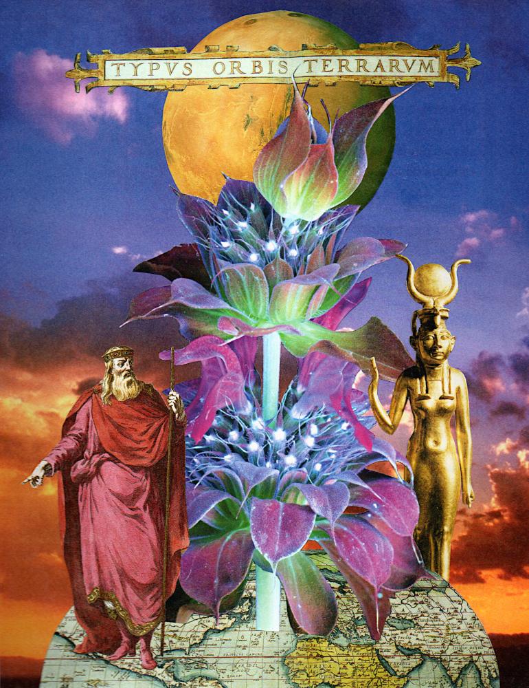 Typus orbis - Seibel Collage