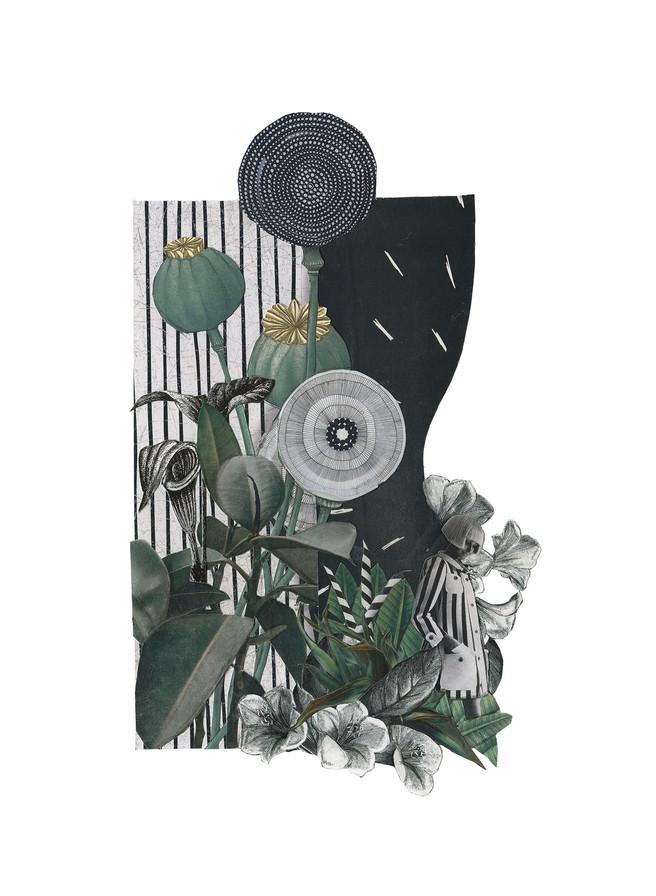 Verde jardín - Andrea Ferrer