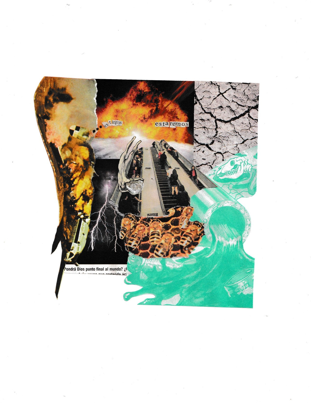 Extinción - Valentina Medina
