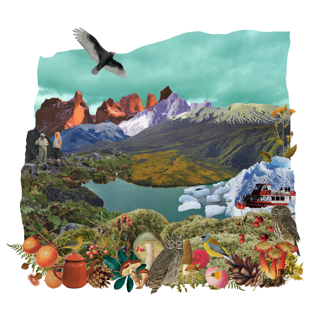 Cordillera - Marcia Solis