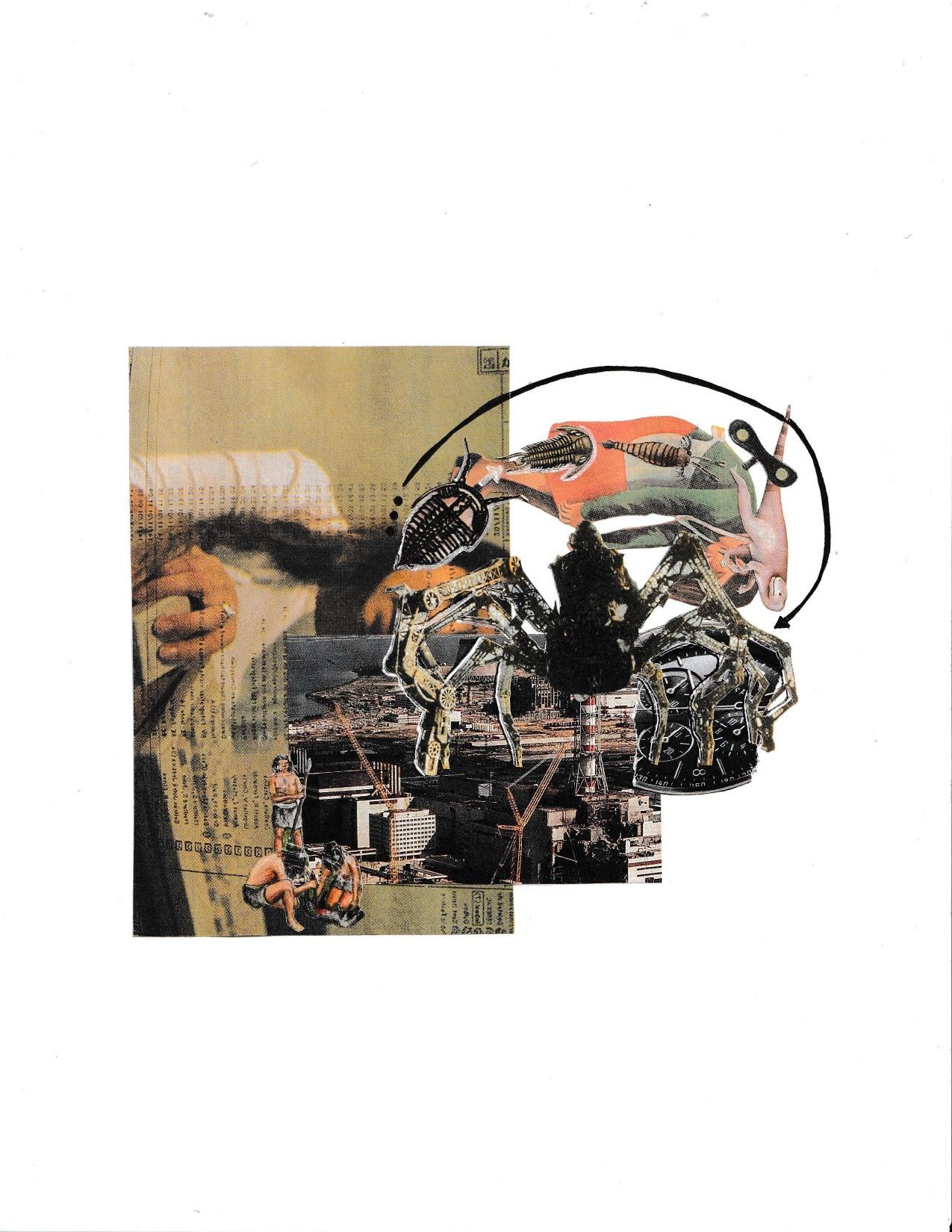 Evolución - Valentina Medina