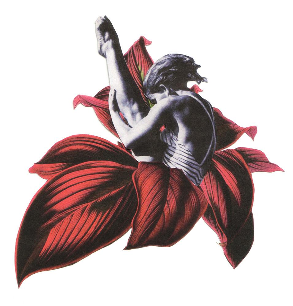 Replegar - Michelle Valdivia