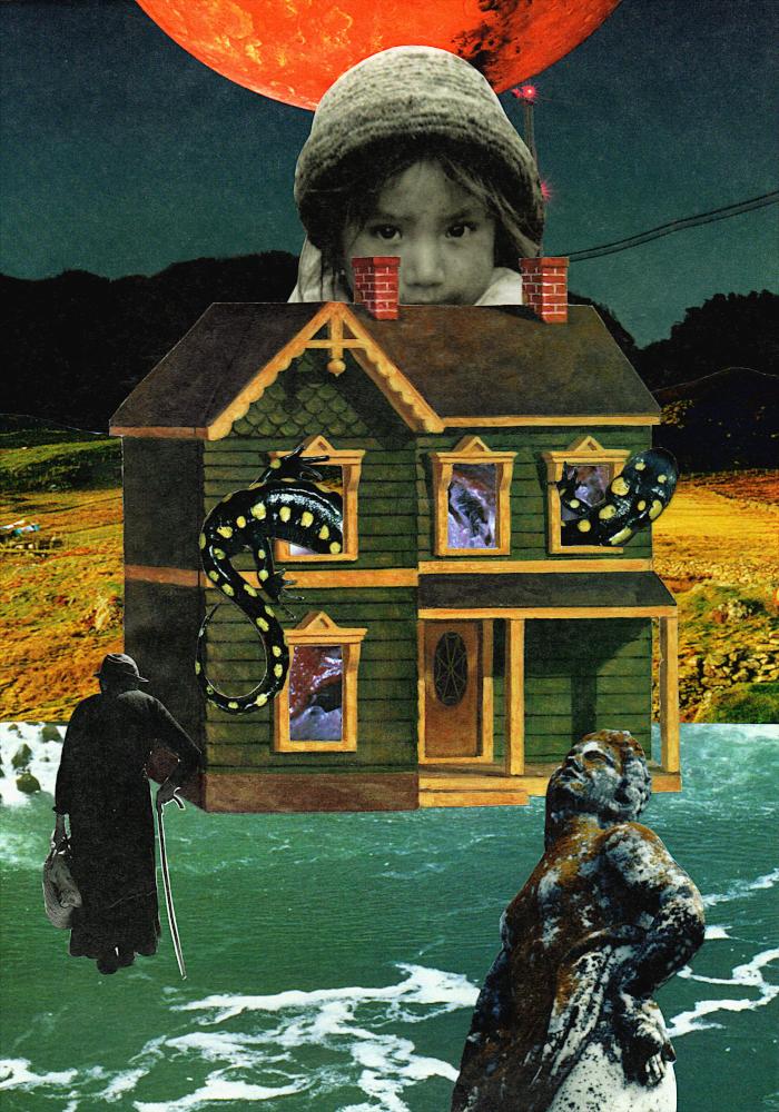 La Casa de los Débiles - Seibel Collage