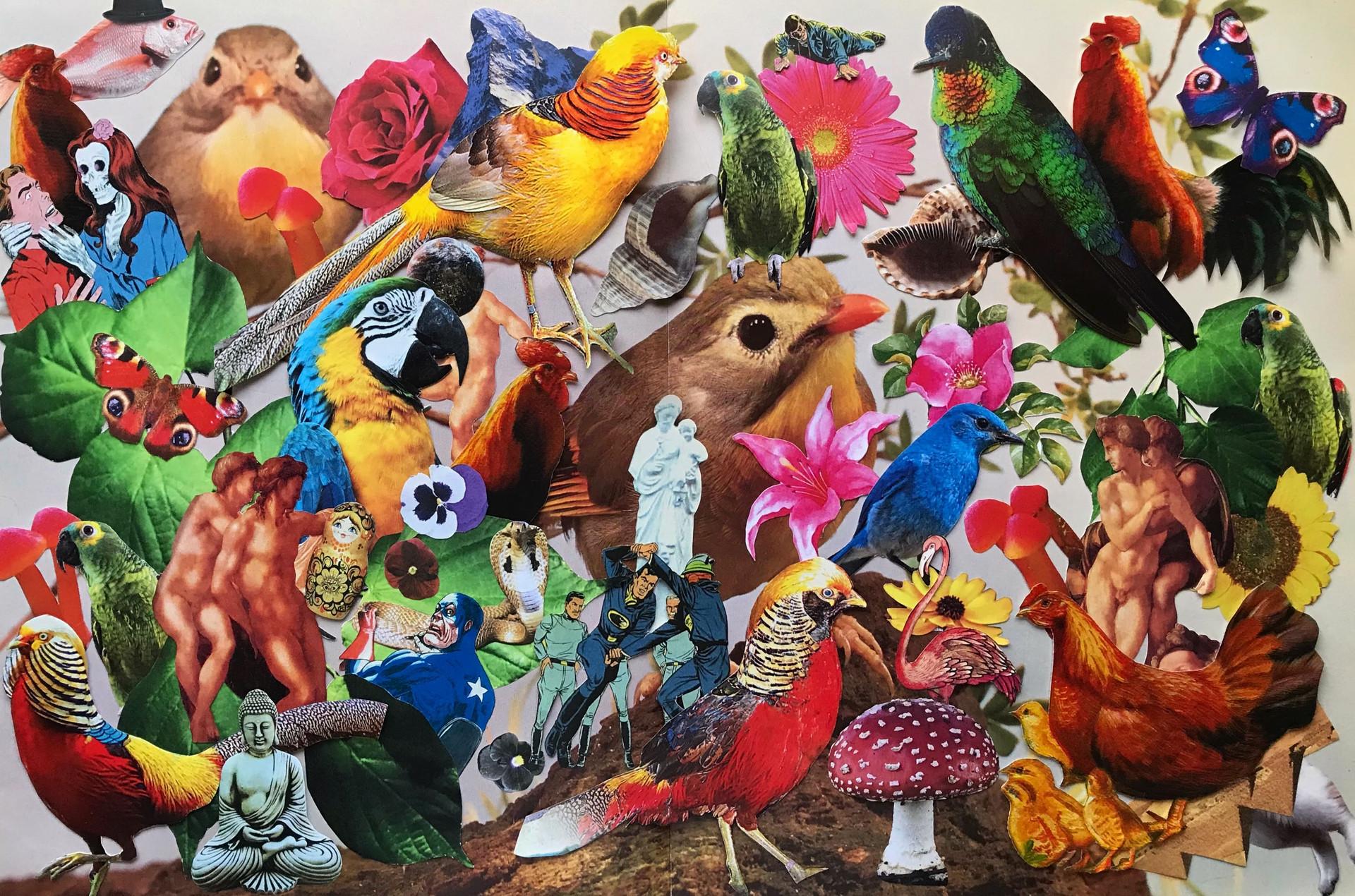 Pájaros - Carolina Stine