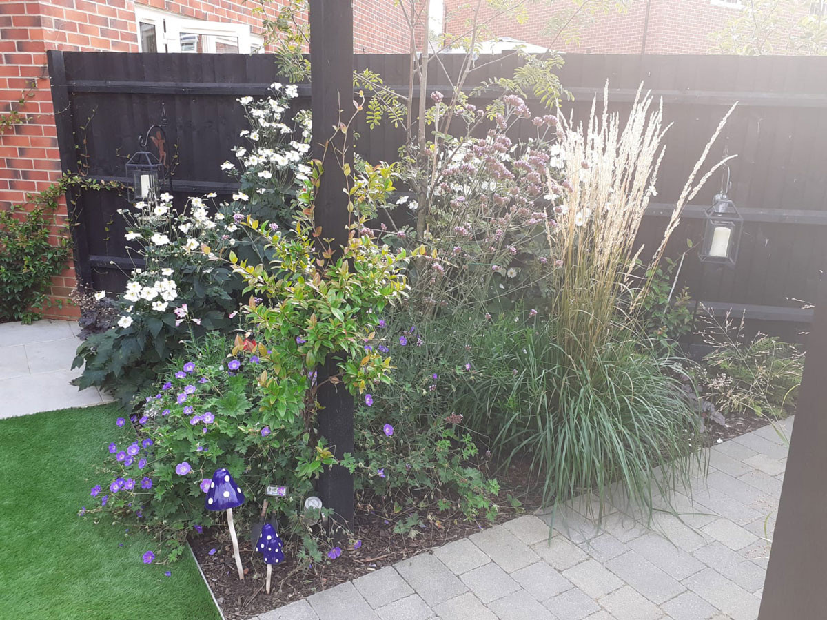 Small-new-build-garden-11-quercus-garden
