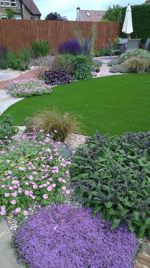 Modern-cottage-garden-4-quercus-garden-d