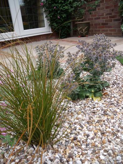Modern-cottage-garden-11-quercus-garden-