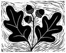 Quercus Garden Design.png