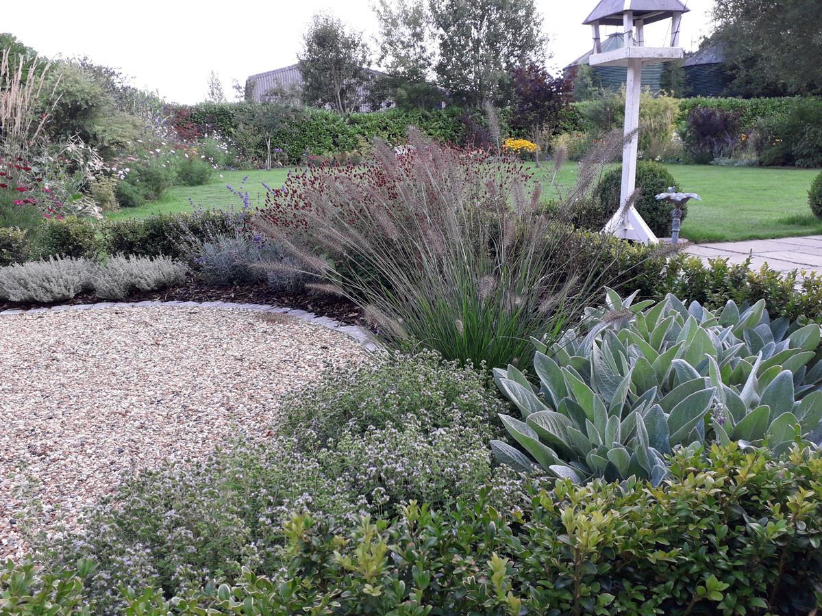 Planting-1-Mediterranean-planting-quercu