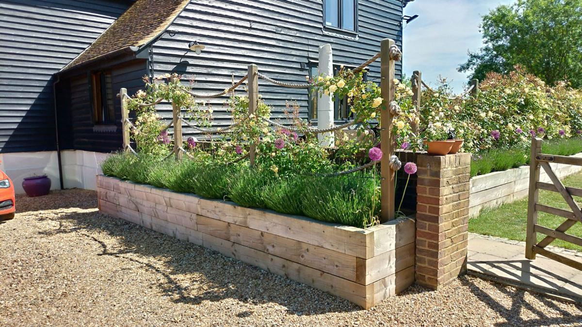 Planting-12-roses-lavender-quercus-garde