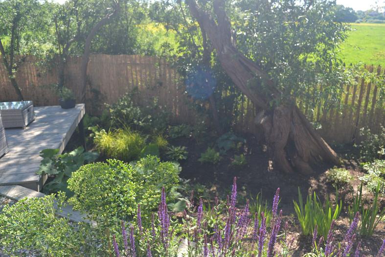 Composite-deck-garden-4-quercus-garden-d