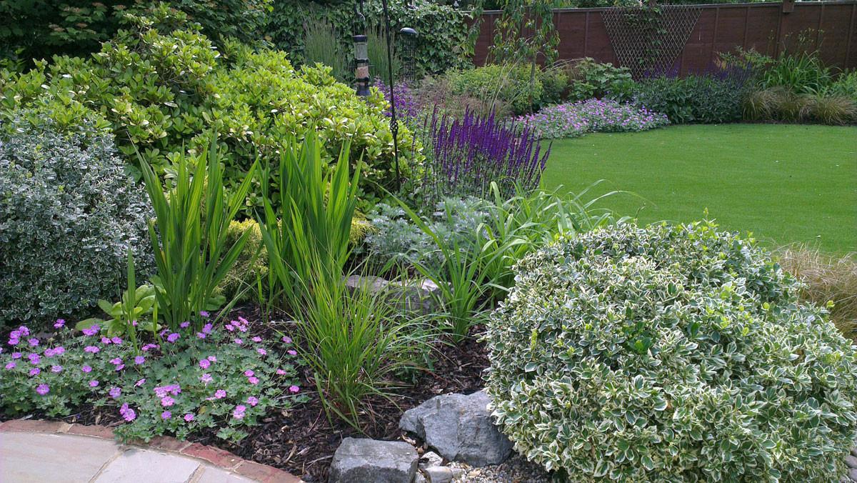 Modern-cottage-garden-7-quercus-garden-d