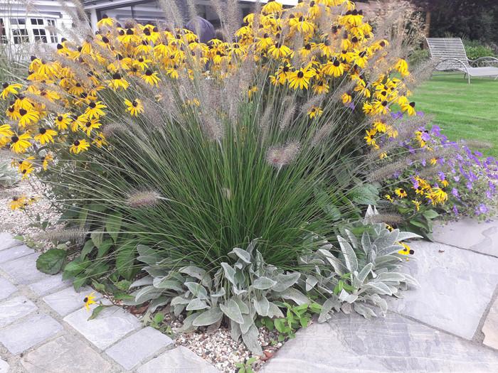Planting-8-prairie-planting-quercus-gard