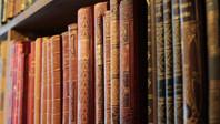 La richesse de la littérature russe classique pour les francophones