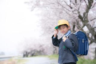 入学式ロケ撮影のご案内