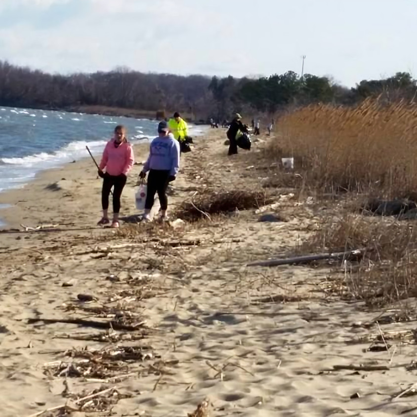 Matapeake Beach & Pier Cleanup
