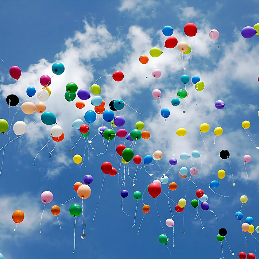 QAC Balloon Release Hearing for Ord. 19-13