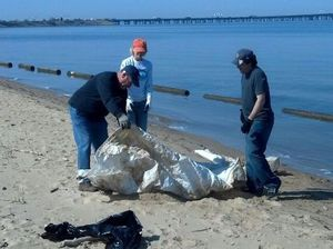 Volunteers Clean KI Shorelines July 31 2013