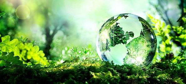 All Green Day.jpg