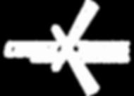 CUBEX_LOGO_UPDATED _RAJAT 08_08_19.png