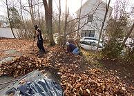 Yard Cleanups Boston