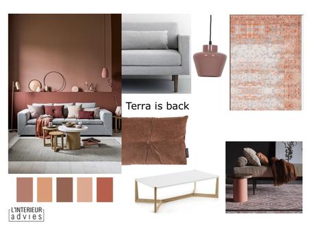 Terra in je interieur - de comeback van deze warme kleur