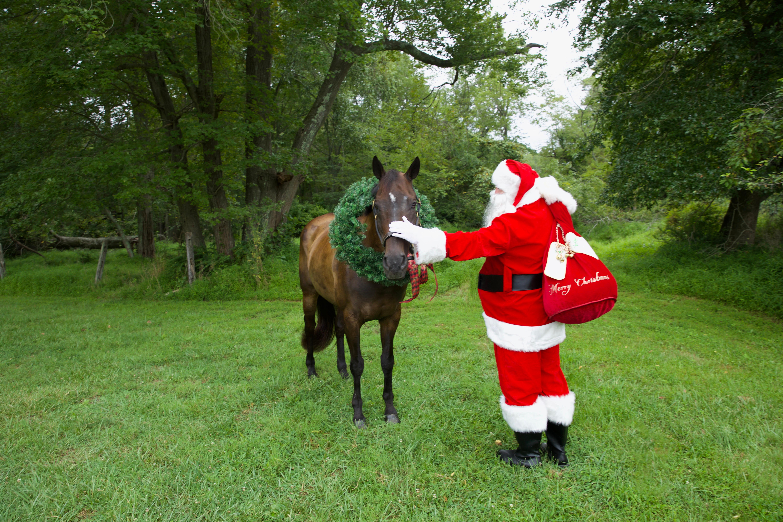 Santa Visits Metta Equestrian LLC