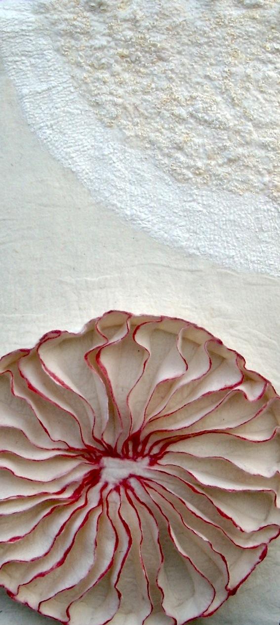 Japanese mushroom 1