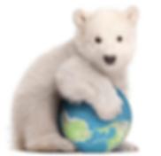Polar Bear with Globe.png