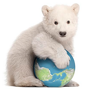 Polar Bear with Globe.png