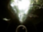 Screen Shot 2018-10-30 at 8.21.22 PM.png