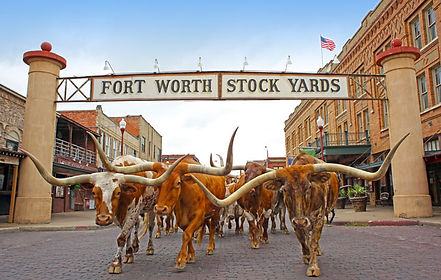 fort worth stock yards.jpg