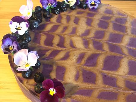 Raw cheesecake med blåbär